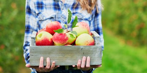 Woman holding crate with ripe organic apples on farm