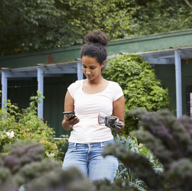 7 Best Gardening Apps Virtual Tools For Garden Planning
