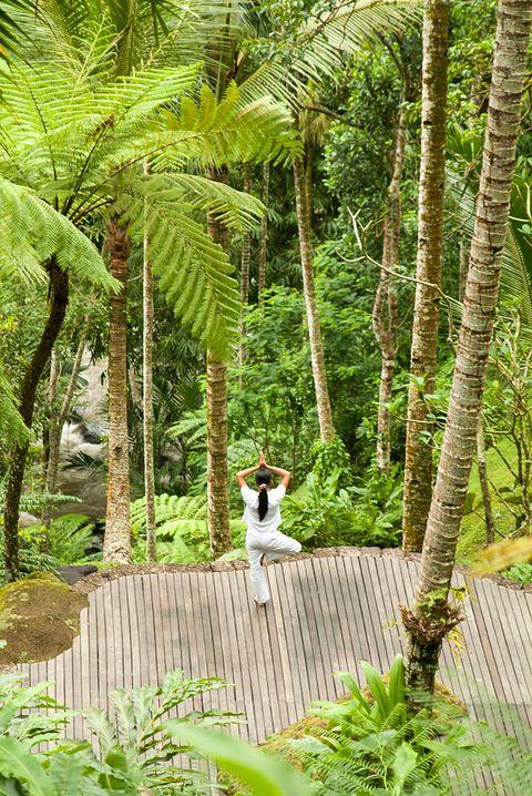 A woman performing yoga at the Como Shambala Estate near...