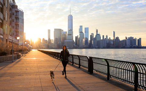 sunrise in new york city
