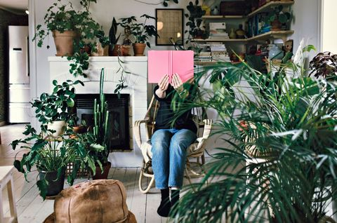 woman sitting on armchair reading book amidst plants in room at home