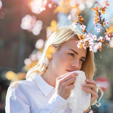 hay fever symptoms - spring allergies