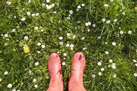 Woman standing in red rubber boots in a meadow with daisy flowers