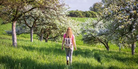 Woman tourist with backpack enjoying time in blooming orchard at springtime.