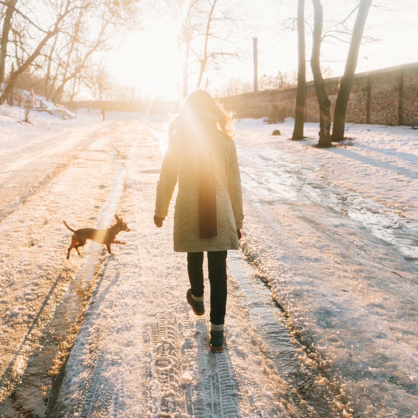 Woman walking in park with dog in winter
