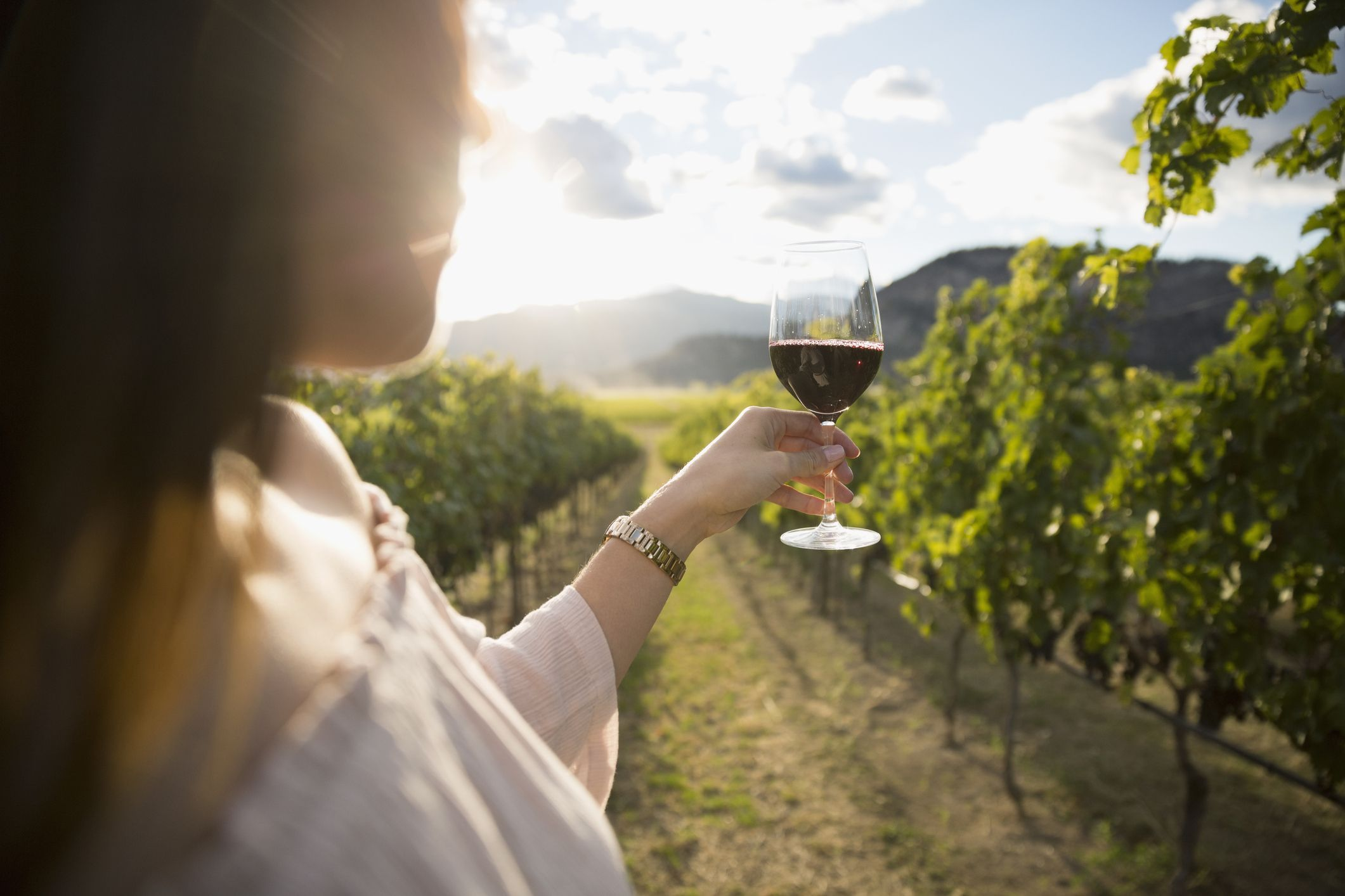 The Sonoma Valley Wine Trolley Will Take You on a Four-Stop Tasting Tour