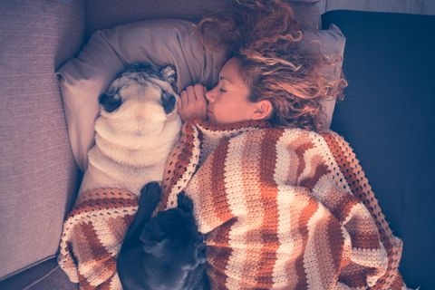 Woman With Dogs Sleeping On Bed At Home