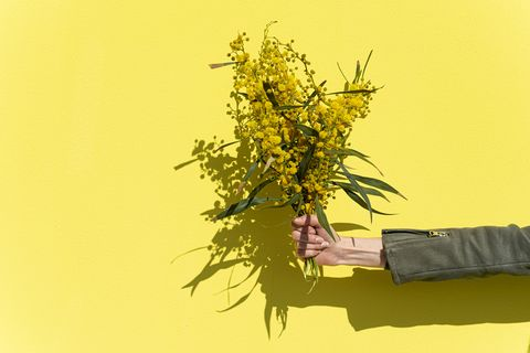 woman's hand holding mimosas bouquet