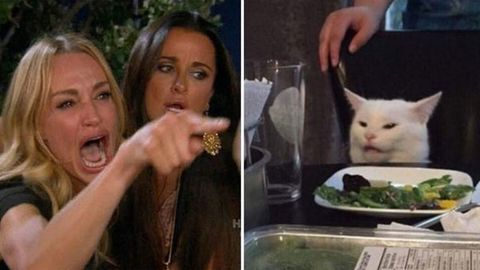Image result for woman yelling at cat meme