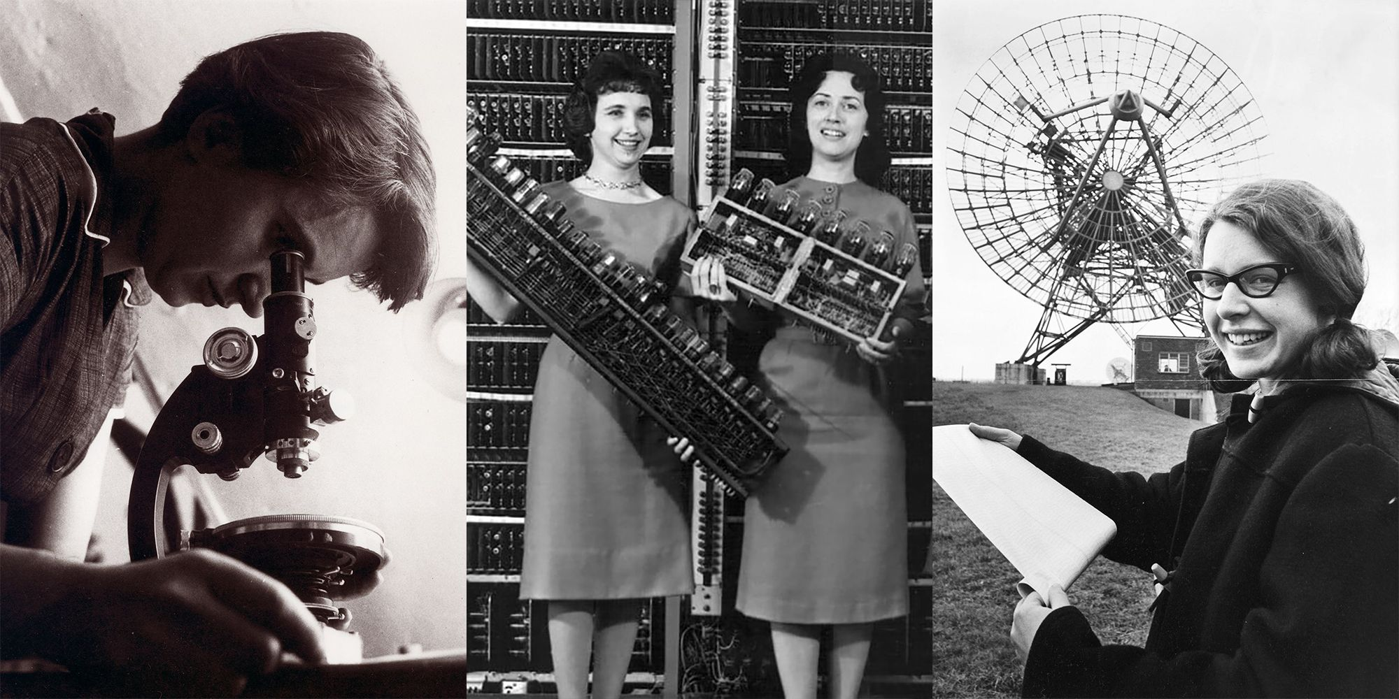 19 Groundbreaking Discoveries by Women That Were Credited to Men