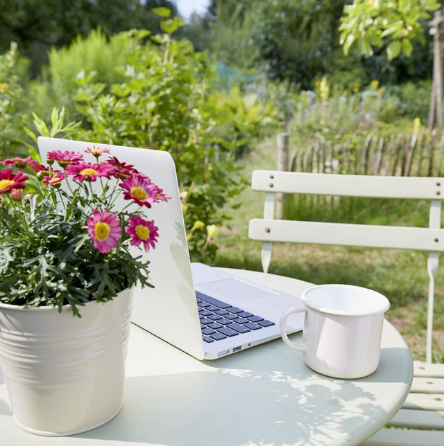 working from home garden