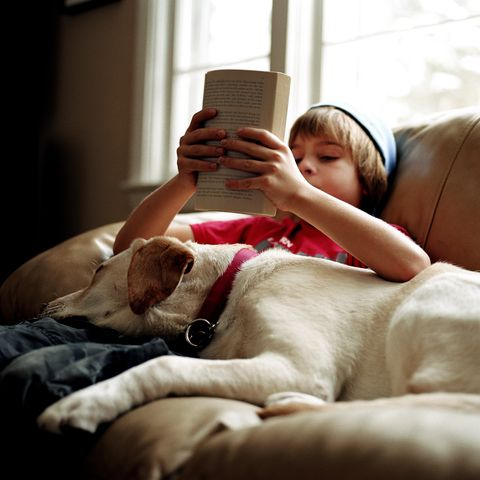 how to work from home with kids young boy sitting on a couch reading with his dog
