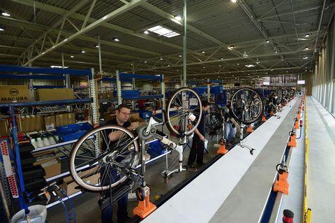 netherlands lifestyle bicyle economy