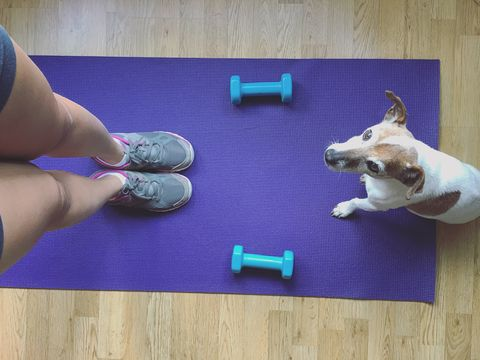 Working out with dog