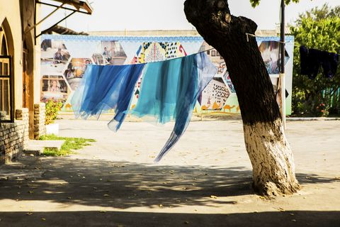 freshly dyed blue silk color samples dry on a clothesline with one end attached to a tree and the other attached to a building