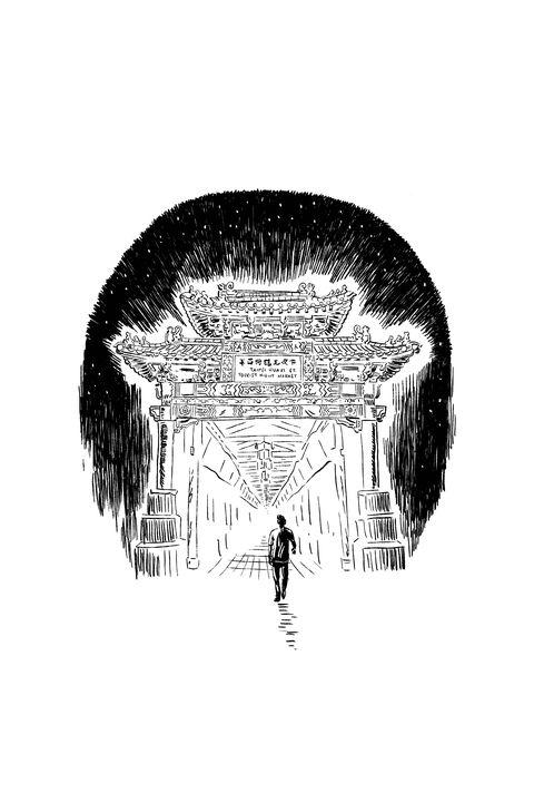 illustrations by tony millionaire