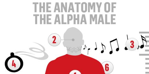 alpha-male.png
