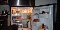 dog in fridge.JPG