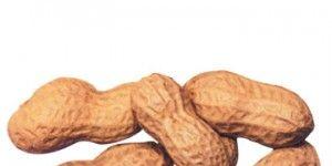 peanuts-300x300.jpg