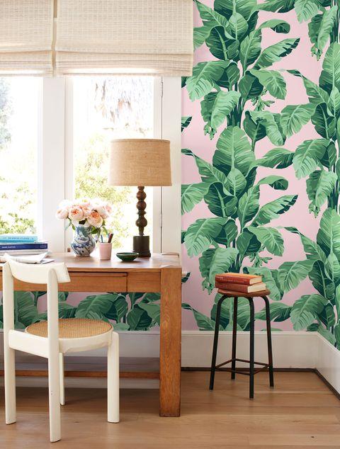 Green, Houseplant, Leaf, Furniture, Table, Room, Interior design, Plant, Flowerpot, Chair,