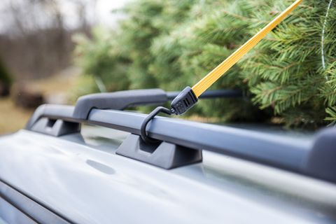 How To Tie A Christmas Tree To A Car Transport A