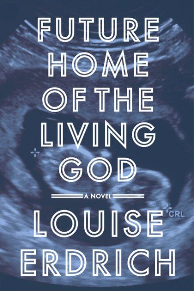 louise erdrich novel