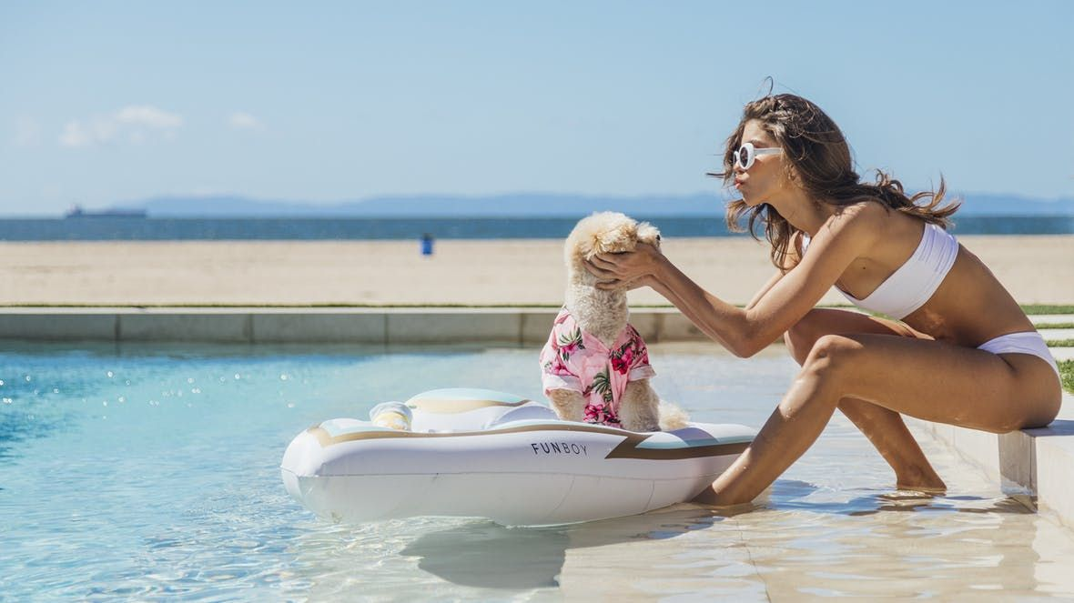 Dog Pool Floats Exist 8 Cool Pool Floats For Dogs