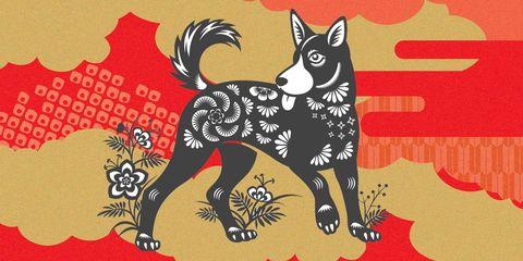 Canidae, Dog, Carnivore, Black norwegian elkhound, Illustration, Tail, Ancient dog breeds, Schipperke, Art, Akita,
