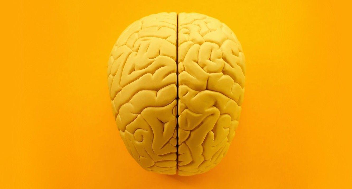 Watch Dr Pimple Popper Remove A Yellow Brain Lipoma