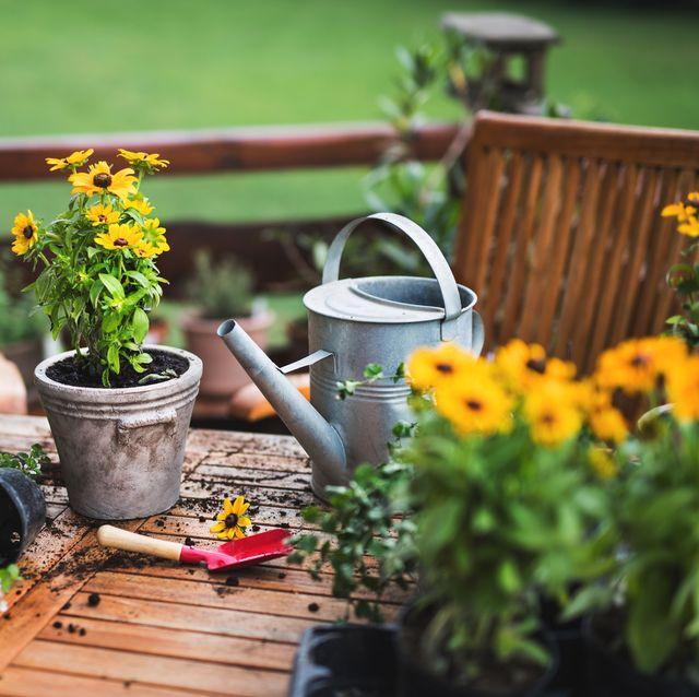 accesorios, herramientas y regalos para amantes de la jardinería