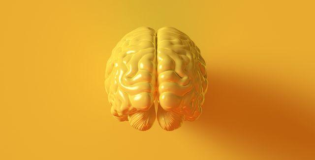 その人とはもう何年来もの知り合いのはずなのに、どうしても名前が出てこなくて、「久しぶり!」というのが精一杯…。記憶力や認知力に多少の変化を感じたとしても、心配し過ぎる必要はないのだとか。というのも、これらは老化の一環として生じる正常な現象なのだそう。そこで今回は、「脳を若々しく保つためのヒント」を紹介します。