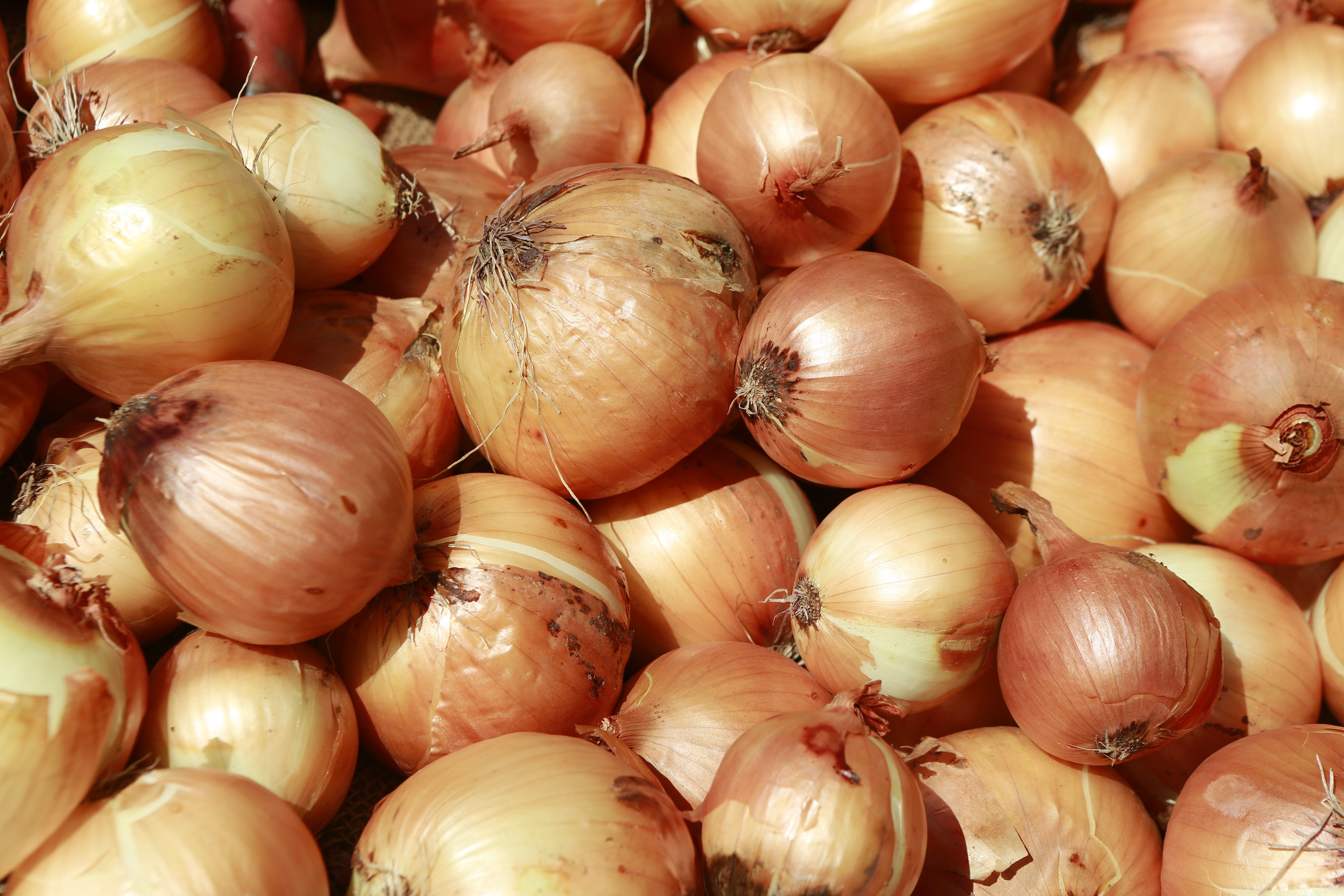 The Benefits of Onions for Runners