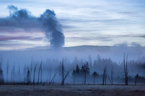 Yellowstone Is in Serious Trouble