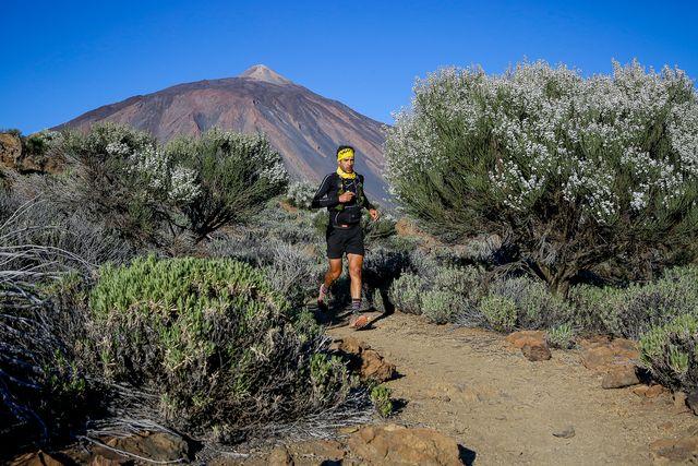 yerai durán corre entre los arboles en el inicio de la tenerife bluetrail de trail running