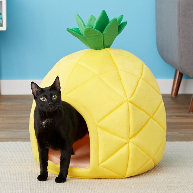 yml pet dog cat pineapple bed house