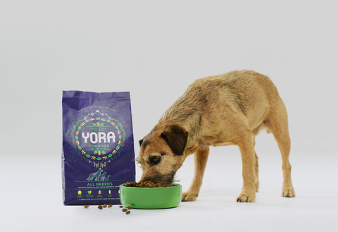 Yora dog food photo