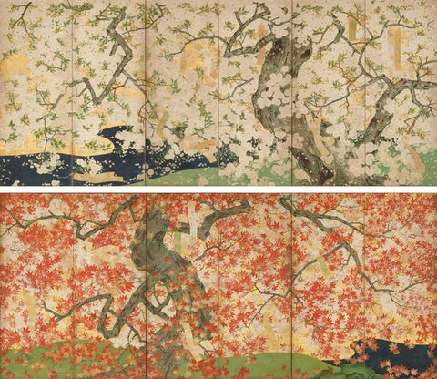 吉野龍田図屏風(よしのたつたずびょうぶ) 6曲1双 紙本金地着色 日本・江戸時代 17世紀  根津美術館蔵