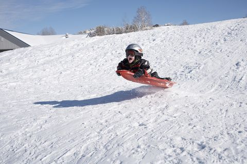 best sleds for a snowy winter winter sledding