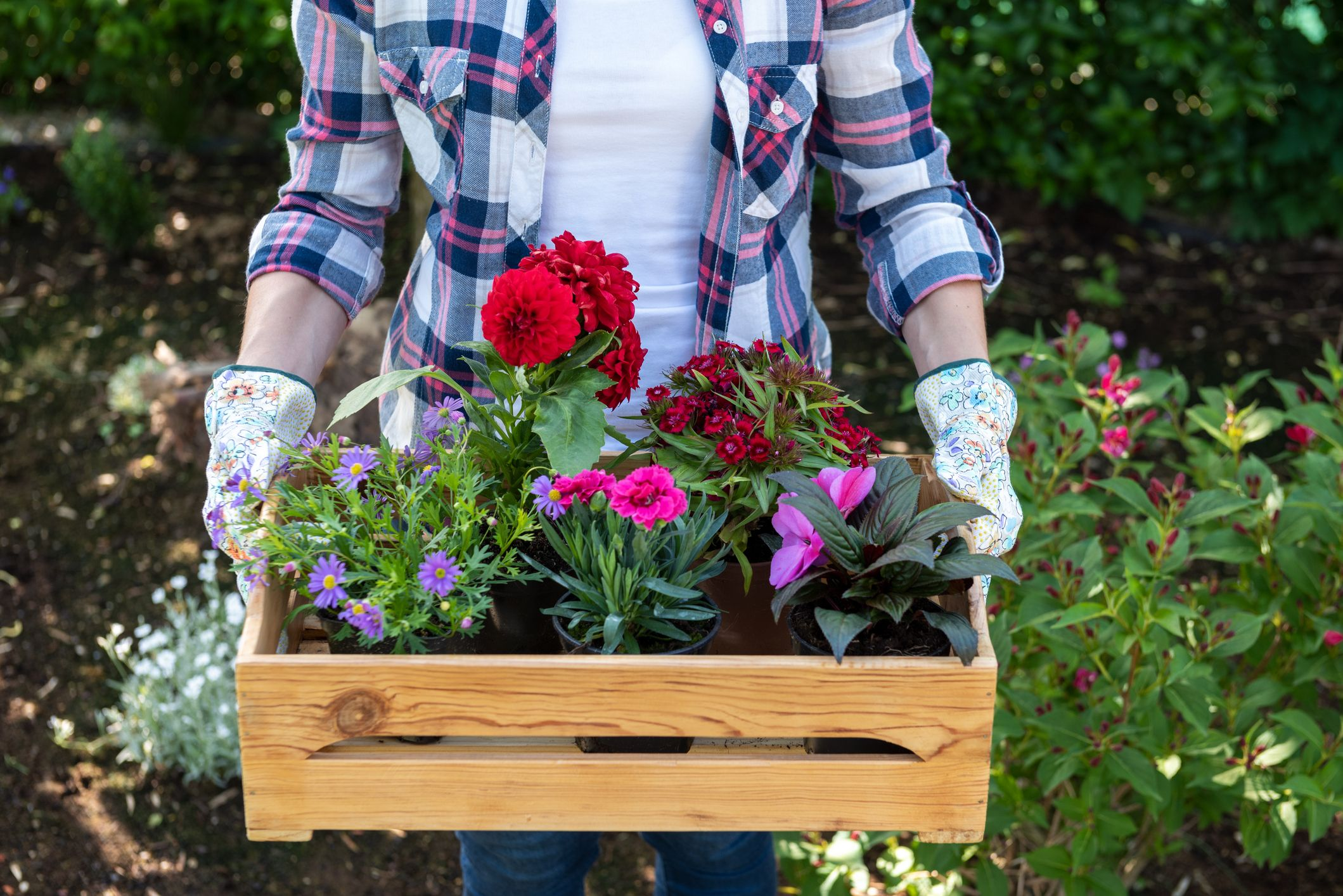 7 tips on how to be a mindful gardener