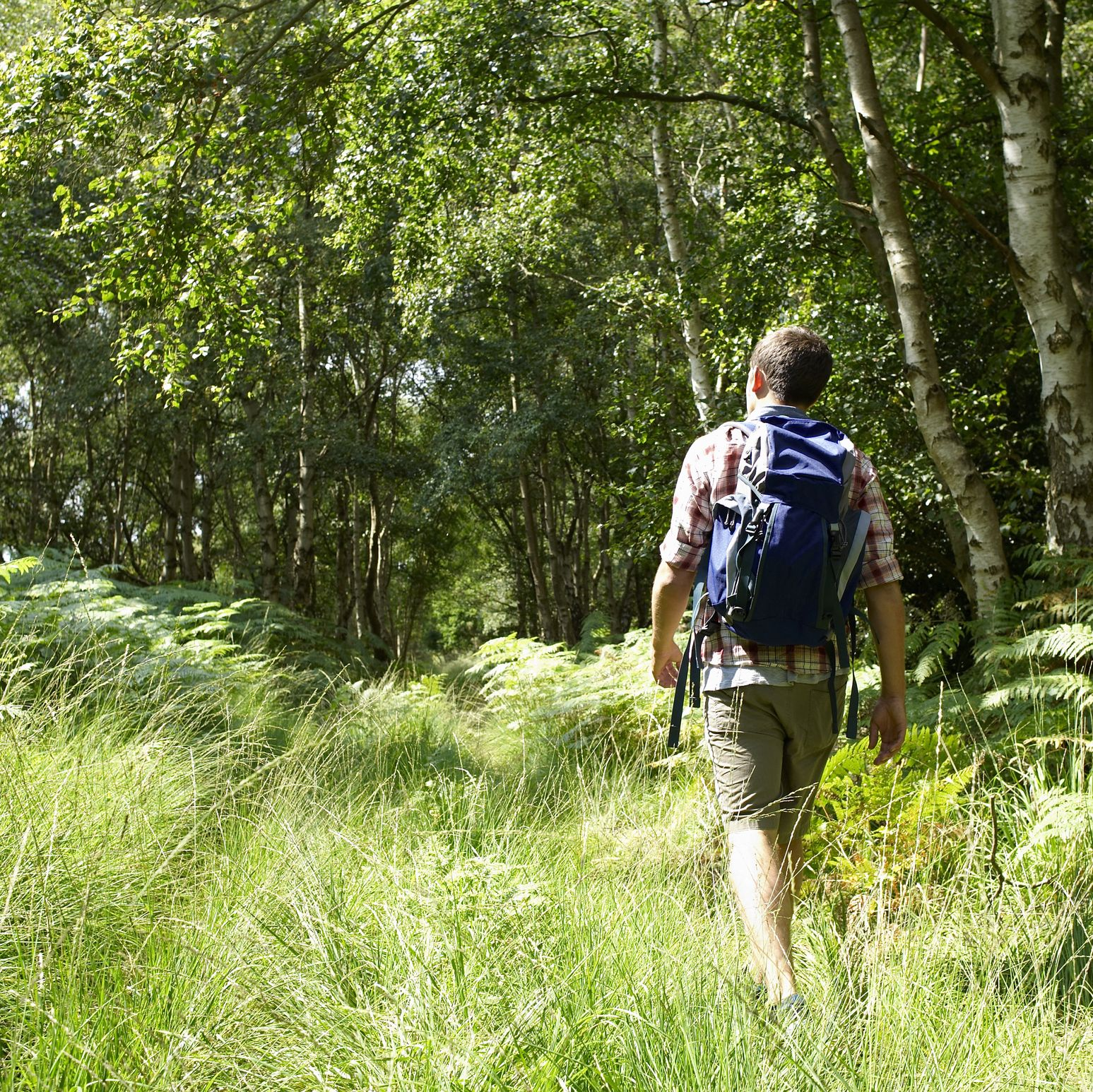 Young hiker walking through woodland.