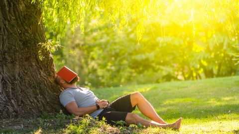 a young man is sleeping under the tree weeping willow with the book on his face