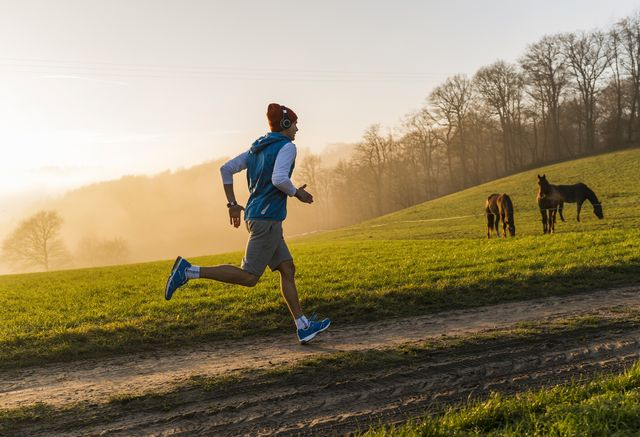 young man jogging in the morning, horses in the background