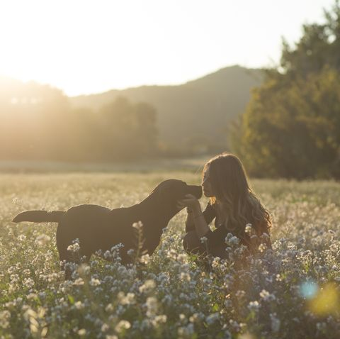 Young woman and her dog in field of flowers at twilight
