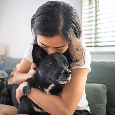 young woman hugging dog and on living room sofa