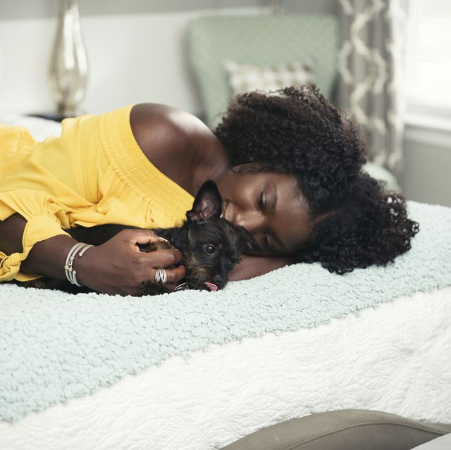 Young woman playing with dog in bed