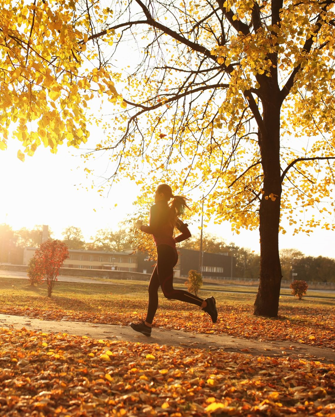 Young woman running in park, autumn