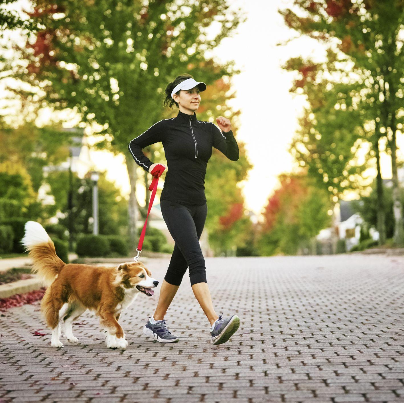 6 Speed Walking Tips to Help You Burn as Many Calories as You Would Running