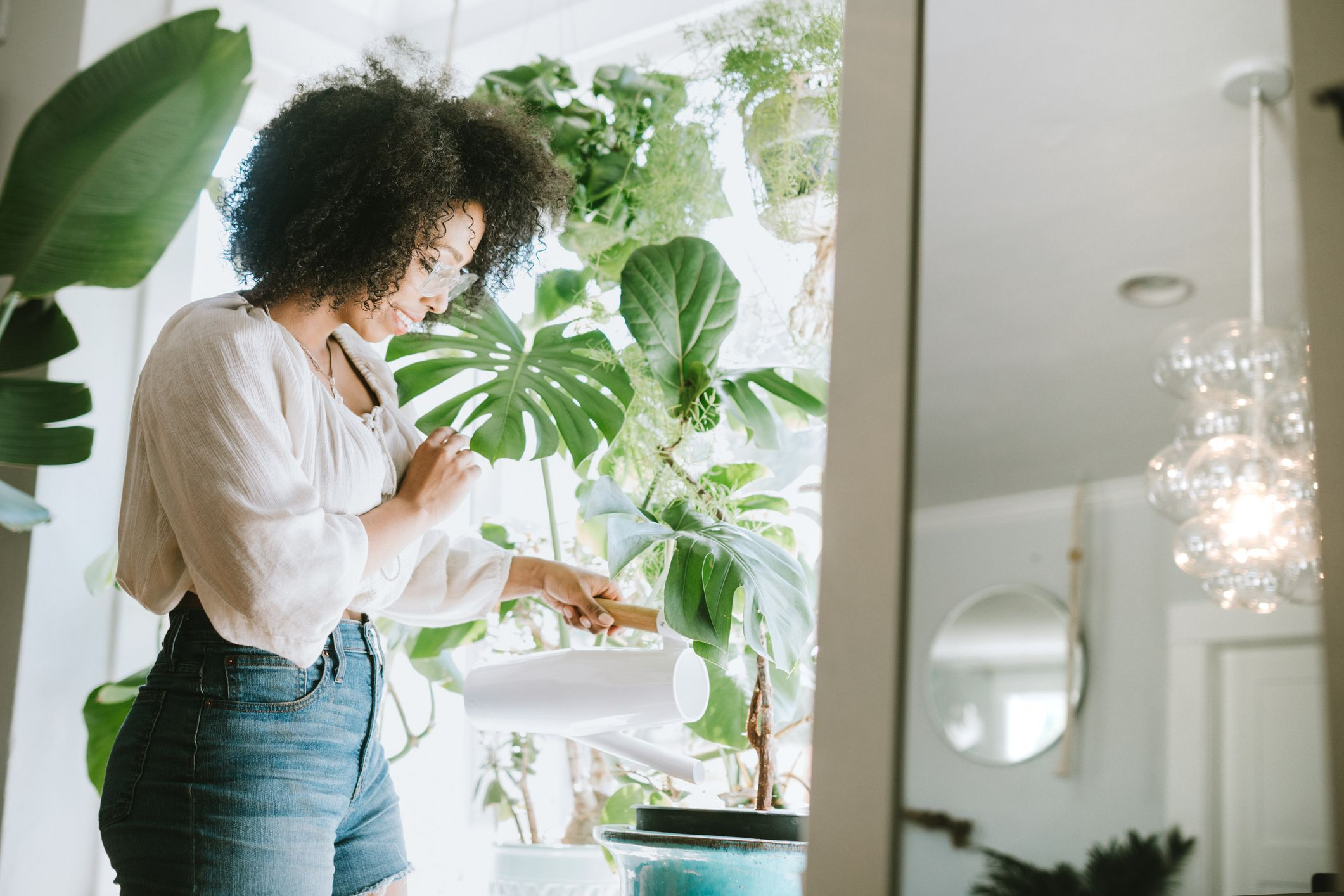 Urbanization, Design, Loneliness… What's Behind the Boom of Apartment Plants?
