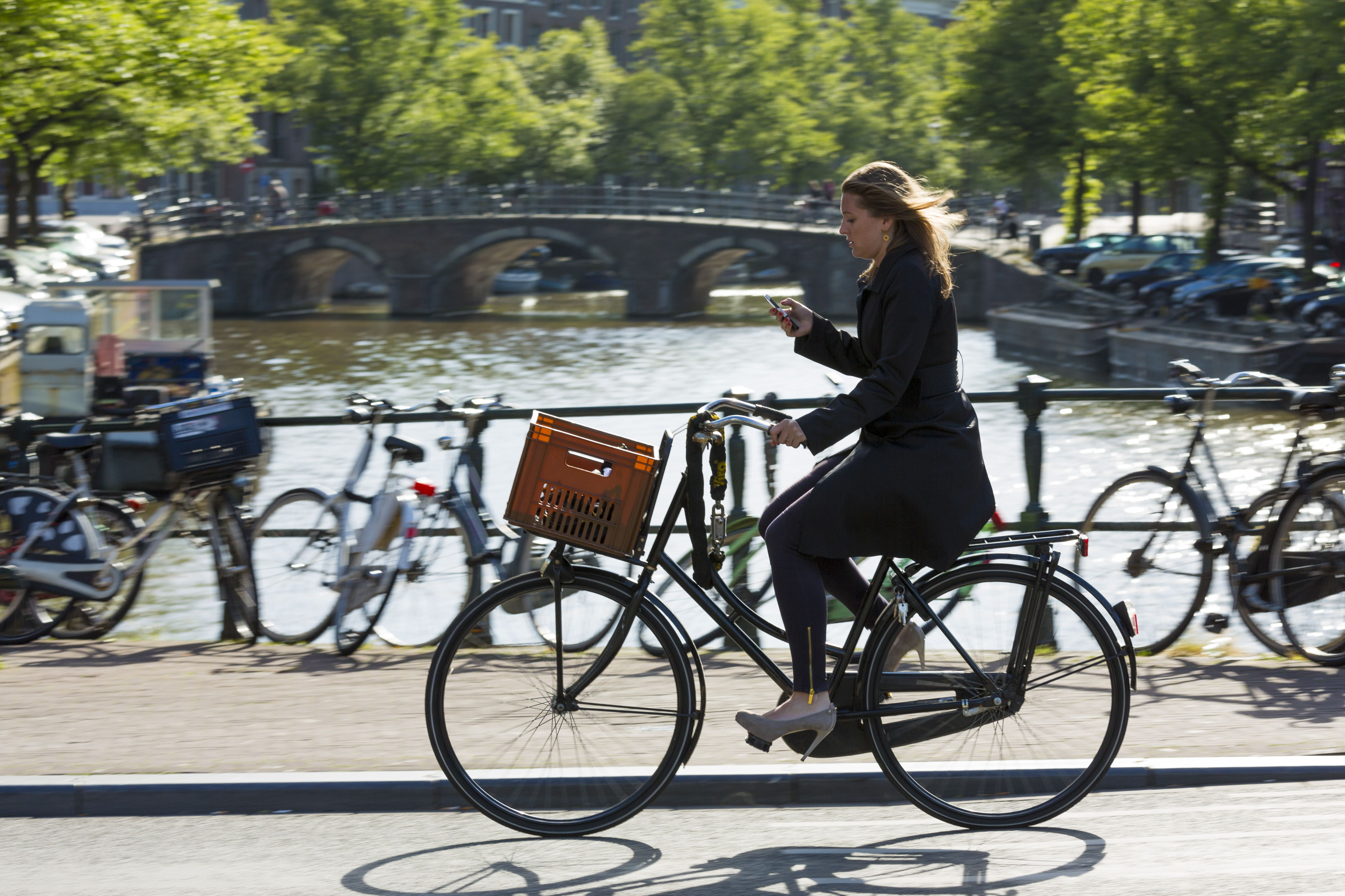 8af69e145 Netherlands Ban Cell Phone Use on Bikes - Distracted Biking