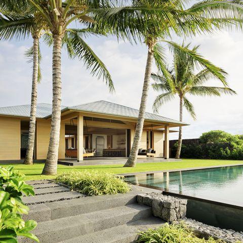 Tree, Palm tree, Property, House, Arecales, Resort, Tropics, Home, Attalea speciosa, Vacation,